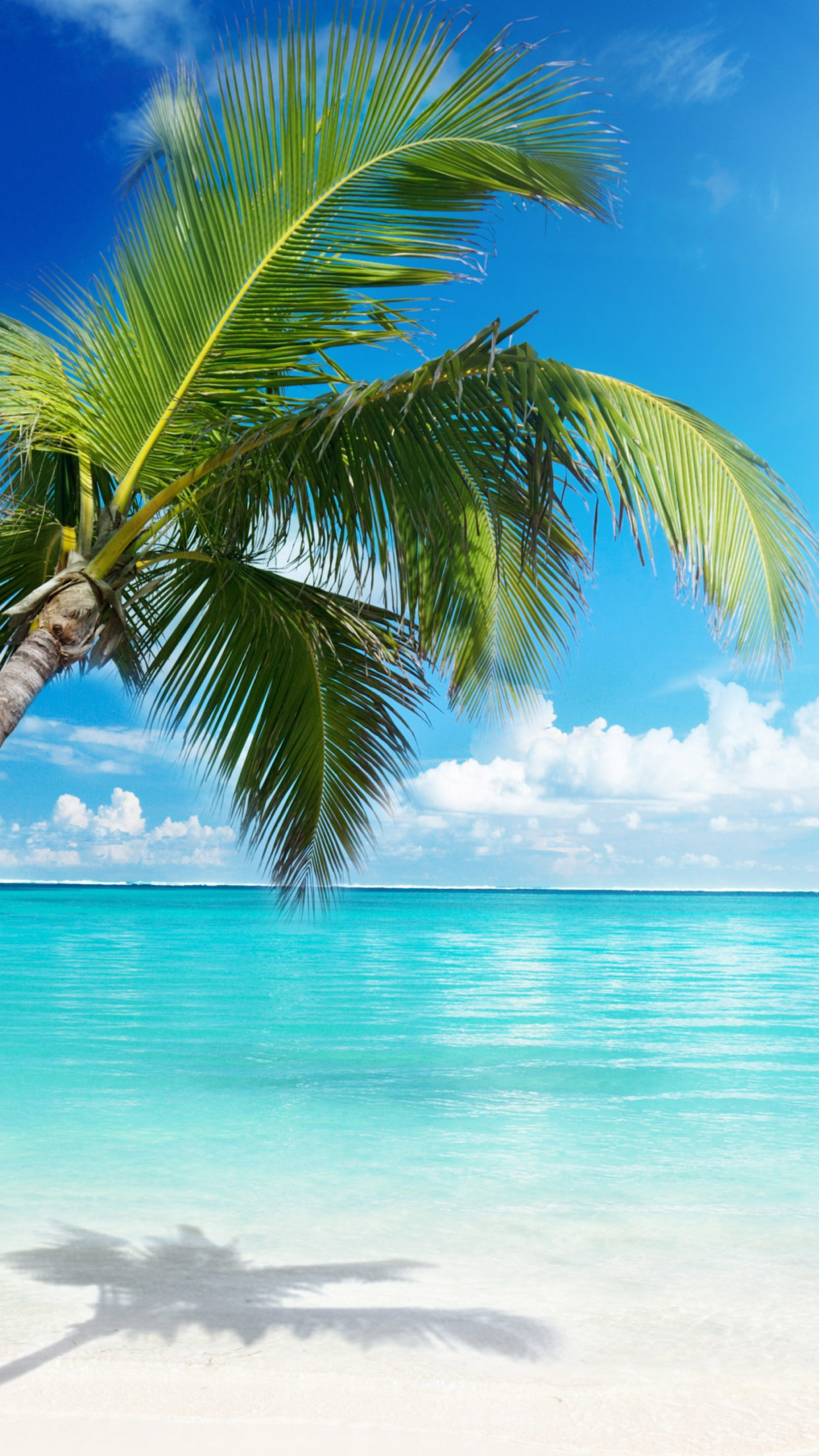 The Beach Amazing Nature Wallpaper Photos – HD Wallpapers Backgrounds Desktop, iphone & Android Free Download