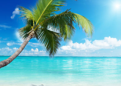The Beach Amazing Nature Wallpaper Photos - HD Wallpapers Backgrounds Desktop, iphone & Android Free Download