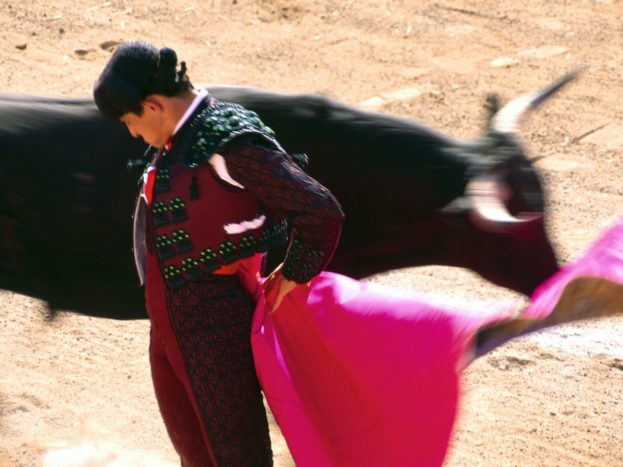 Bull Fighter HD+1600x900, UXGA 1600x1200 - HD Wallpapers Backgrounds Desktop, iphone & Android Free Download